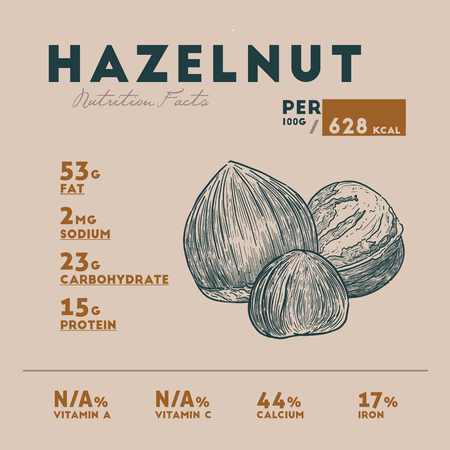 Nutrition fact of hazelnut. Hand drawn vector illustration. Banque d'images - 120408642