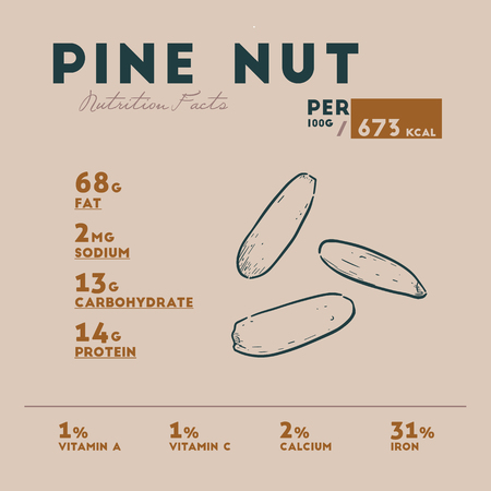 Nutrition facts of pine nut, hand draw sketch vector.