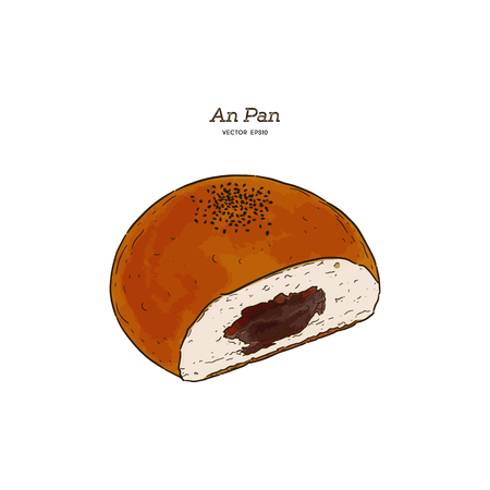 Colored sketches of Anpan bread. Vector drawing of Sweet bun food, usually known in Japan. Colored Bread illustration series. - Vector