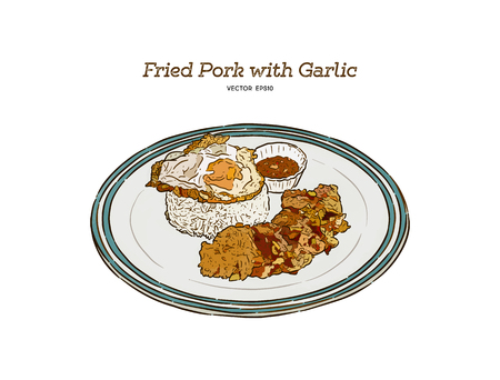 Fried Pork with Garlic, Pepper and fried egg on rice. Easy thai food. Hand draw sketch vector.