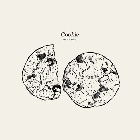 Chocolate chip cookie, hand draw sketch vector. Ilustrace