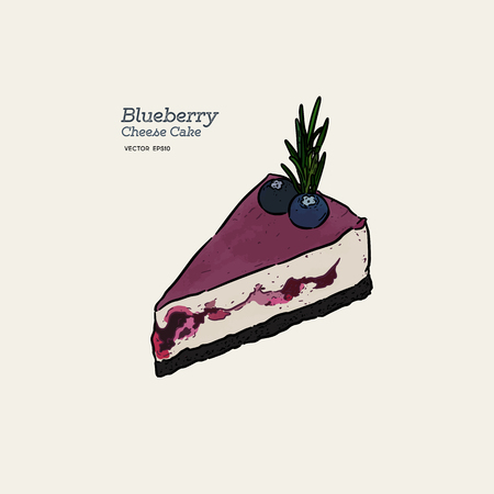Blueberry cheese cake, hand draw sketch vector.