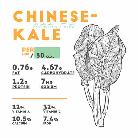 Nutrition facts of Chenese Kale or Chinese broccoli, vegetable. hand draw sketch vector.