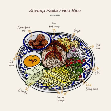 Thai fried rice with shrimp paste, khao kluk kapi. Hand draw sketch vector.