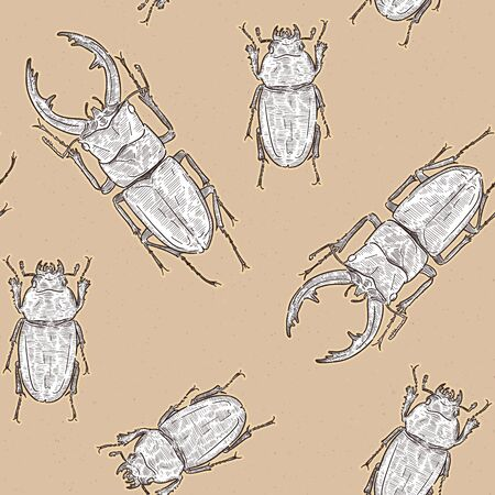 Tokara red stag beetle (Prosopocoilus dissimilis) in Tokara Island, Japan. hand draw sketch seamless pattern vector. Male and female.