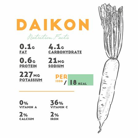 Nutrition facts of daikon. Hand draw sketch vector.