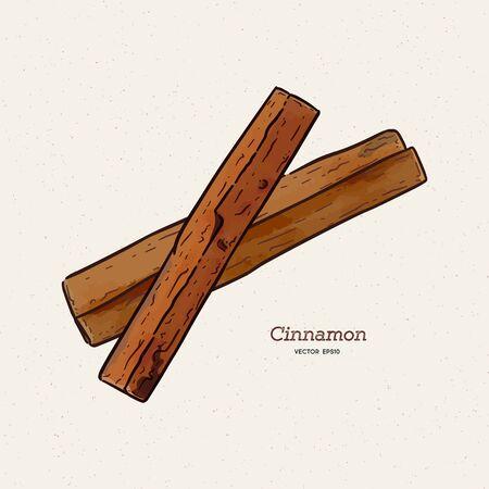 Cinnamon sketch illustration. Nice hand drawn cinnamon sticks vector.