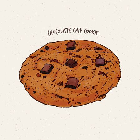 Chocolate-chip cookie, hand draw sketch vector.