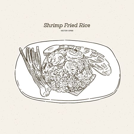 shrimp fired rice, hand draw sketch vector.