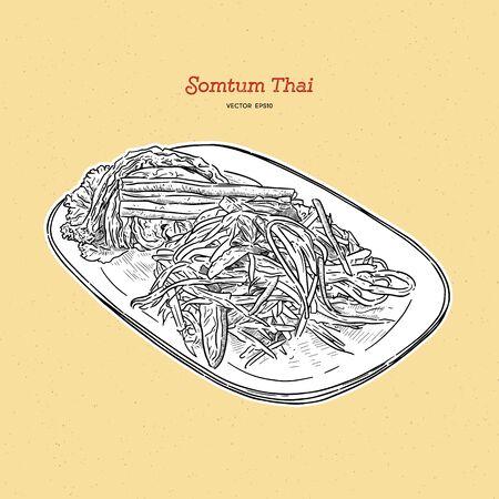 papaya salad or som-tum , thai food. hand drawn sketch vector.