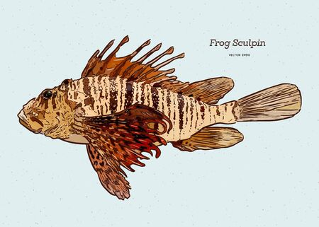 Stellers sculpin (Myoxocephalus stelleri), also known as frog sculpin, hand draw sketch vector.
