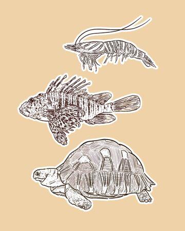 Set of animal, hand draw sketch vector. Ilustração