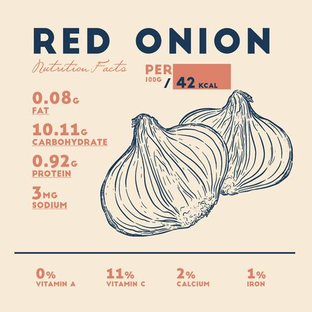 Nutrition facts of red onion, hand draw sketch vector. Ilustração