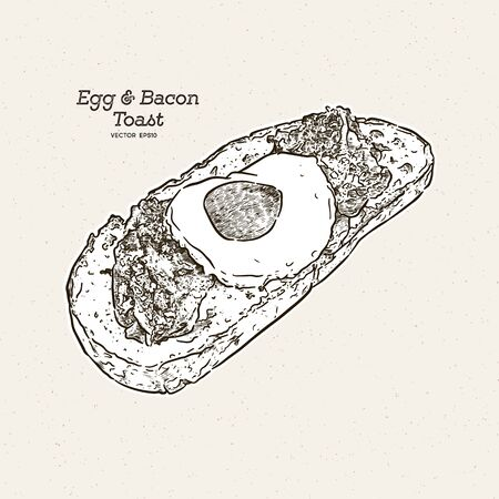 egg and bacon toast, hand draw sketch vector.