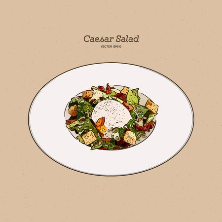 Caesar salad, hand draw sketch vector.