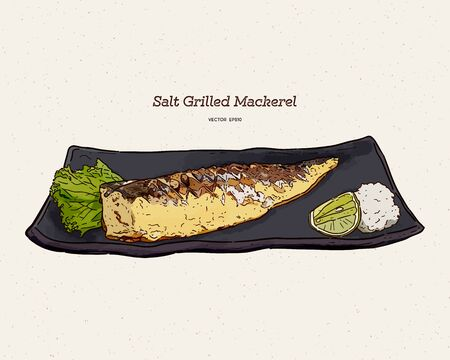 Salt Grilled Mackerel, hand draw sketch vector. Japanese food.