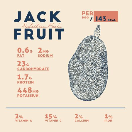 Nutrition facts of jackfruit, hand draw sketch vector.