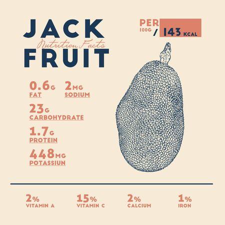 Nutrition facts of jackfruit, hand draw sketch vector.