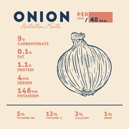 Nutrition facts of onion, hand draw sketch vector. Иллюстрация