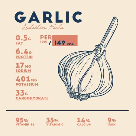 Nutrition facts of garlic, hand draw sketch vector.