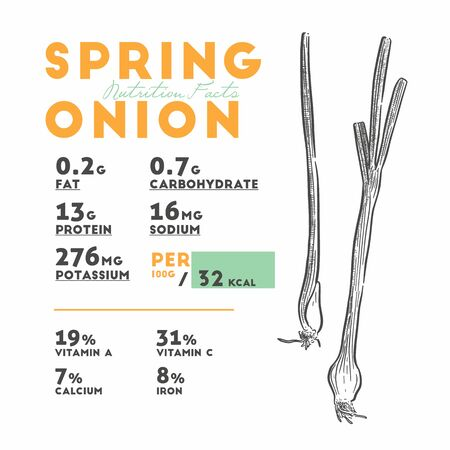 Nutrition facts of spring onion, hand draw sketch vector.