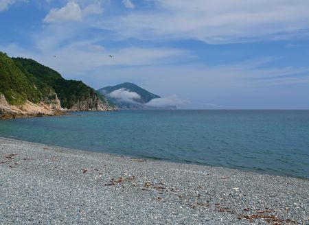 capes: A landscape an sea. A beach with grey-blue pebbles, green capes, sky with white clouds and flying gulls. Russian Far East, Japanese sea, Olenya bay.