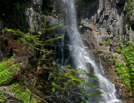 A waterfall among far-eastern taiga. On foreground are fern and young fir. On background is water falling on rocks. Russian Far East, Primorye, Elamovsky waterfall. Stock Photo - 3401915