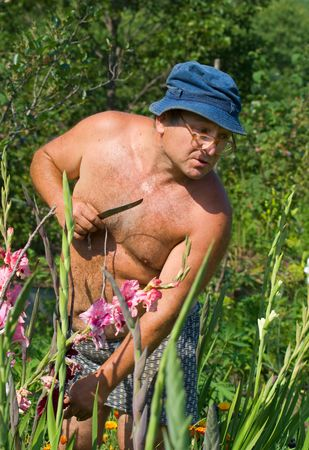 A floriculturist works in garden. Summer, sunny day.