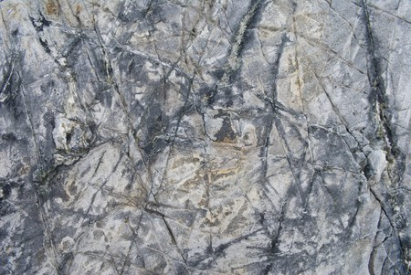 A close-up of surface of a stone on seacoast. Stock Photo - 3950585