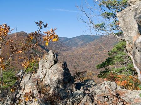 A landscape of autumn highland taiga. Stock Photo - 4075567