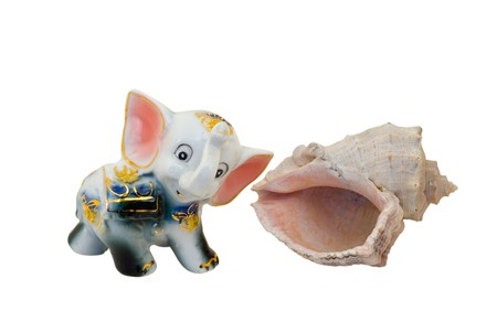 A close-up of the toy china elephant and marine shell. photo