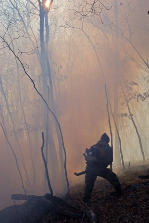 suppression: Suppression of forest fire by the inspector of protection of the state natural reserve Lazovsky. Russian Far East, Primorye.