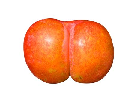 breech: A close-up of the single plum similar to human buttocks. Isolated on white.