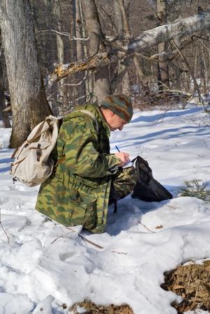 taiga: The zoologist explores an amur (Siberian) tiger in far-eastern taiga.
