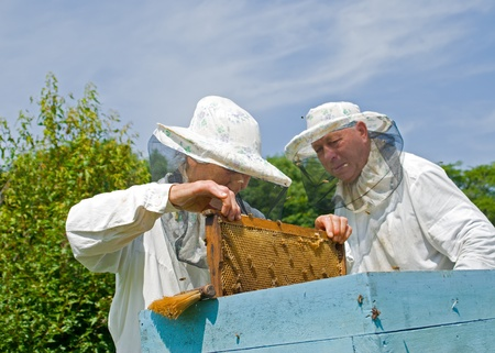 Two beekeepers are at hive on an apiary. Summer, sunny day. Stock Photo