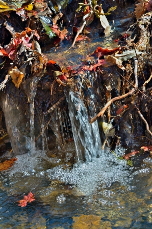 A close up of the riffle on very small river with autumn leaves in jets. Stock Photo - 17162452