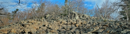 rockslide: A landscape in mountain taiga. Panorama.