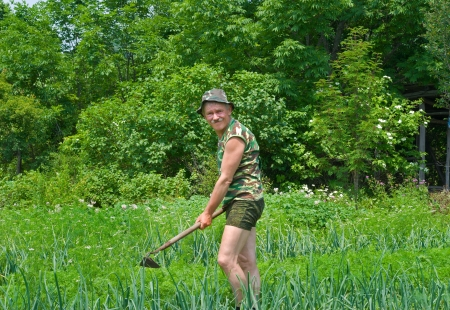 A man weeds garden-bed with hoe. Summer.