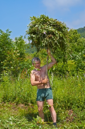 hayfork: The man is carrying a hay with hayfork on green meadow.