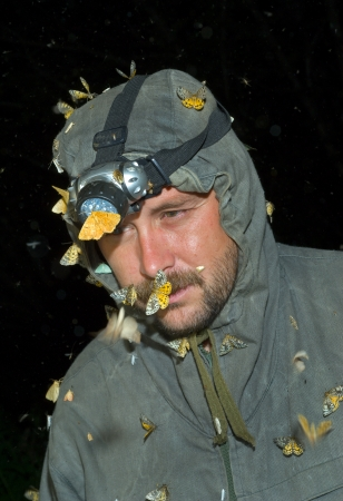 observes: The entomologist observes insects at night.
