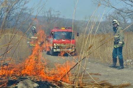 forest fire: A. Coche de bomberos y bomberos en incendio forestal Foto de archivo