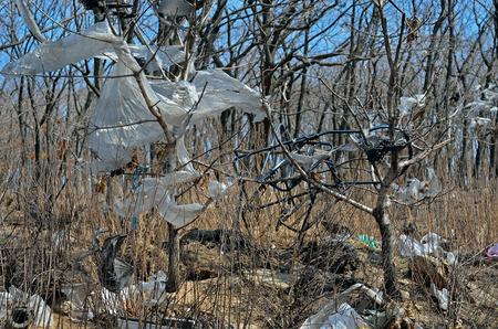A landscape on scrap-heap. Stock Photo