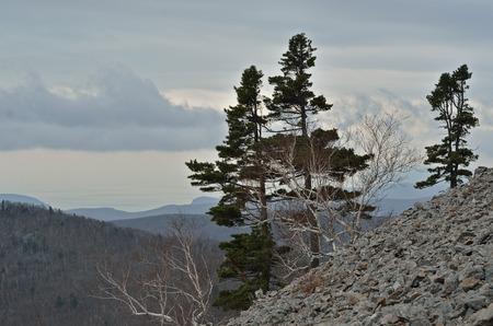 rockslide: A landscape in mountain taiga at sea.