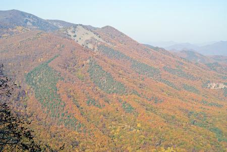 rockslide: The autumn landscape in mountain taiga.