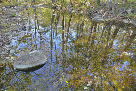 woodsy: A reflection of trees and sky on small woodsy river. Autumn.