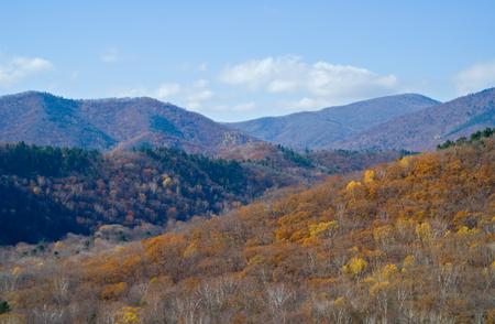 mountainous: The landscape in autumn mountainous taiga. Stock Photo