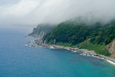 seawater: The landscape on sea: seawater, surf, rocks, cliffs and fog.