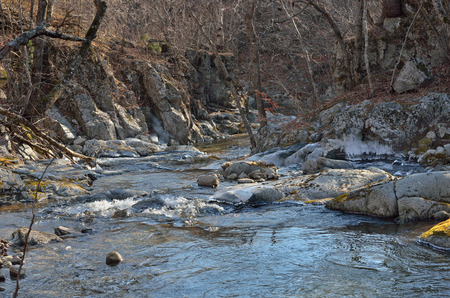 woodsy: A canyon on small mountain river. Late autumn.
