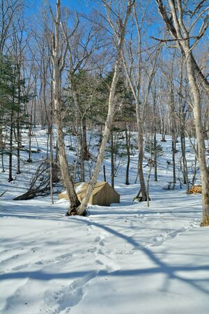 A tent in winter forest.