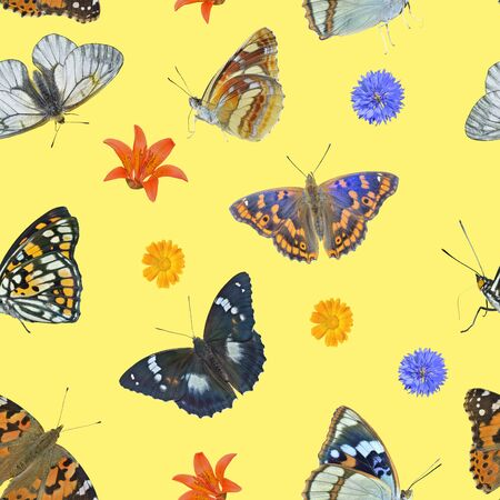 The different variegated butterflies and wildflowers. Seamless pattern on yellow background, own isolated photographs of the author of the pattern are used.